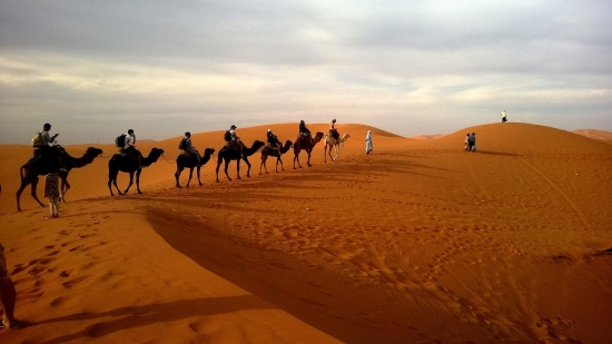 Vajes a Dubai - Nueva Web -  /  - Buteler en Dubai