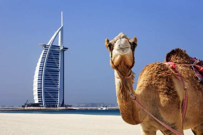 VIAJES GRUPALES A JORDANIA Y DUBAI - Dubái / Ajlun / Amman / Gerasa / Madaba / Mar Muerto / Monte Nebo / Petra / Uadi Rum /  - Buteler en Dubai