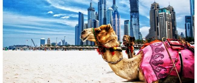 VIAJES GRUPALES A DUBAI Y EGIPTO CON PLAYAS DE HURGHADA - Dubái / Abu Simbel / Aswan / Cairo / Edfu / Hurghada / Kom Ombo / Luxor /  - Buteler en Dubai